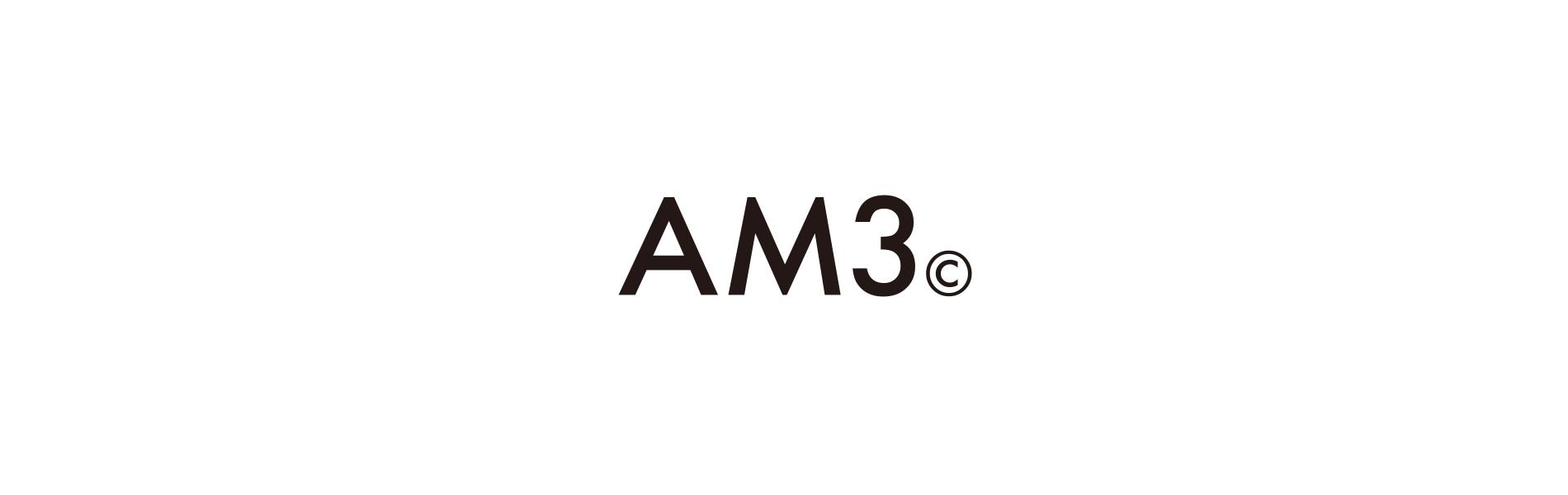 AM3 COMPANY