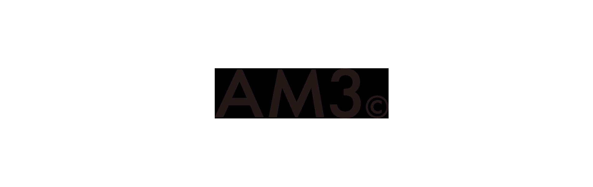AM3COMPANY